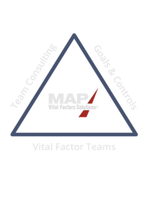 Team Consulting + Goals & Controls + Vital Factor Teams = MAP Vital Factors Solutions